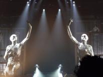 """Les écorchés du """"Mylène Farmer Tour 2009"""""""